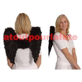 Ailes d' ange Noires 50X50cm (plumes)