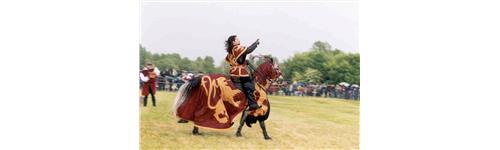 Médiéval-Moyen Age